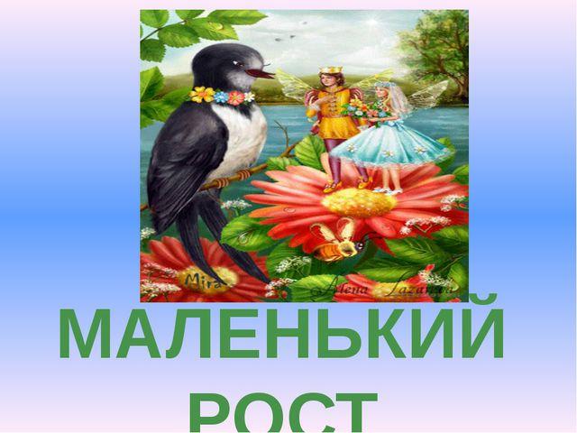 МАЛЕНЬКИЙ РОСТ