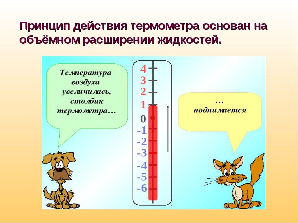 Принцип действия термометра основан на объёмном расширении жидкостей.