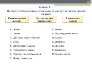 Задание 2 Выбрать органы, из которых образована та или другая система органов