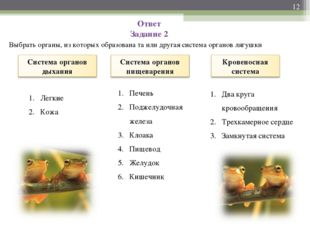 Ответ Задание 2 Выбрать органы, из которых образована та или другая система о