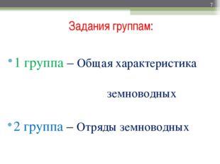Задания группам: 1 группа – Общая характеристика земноводных 2 группа – Отряд