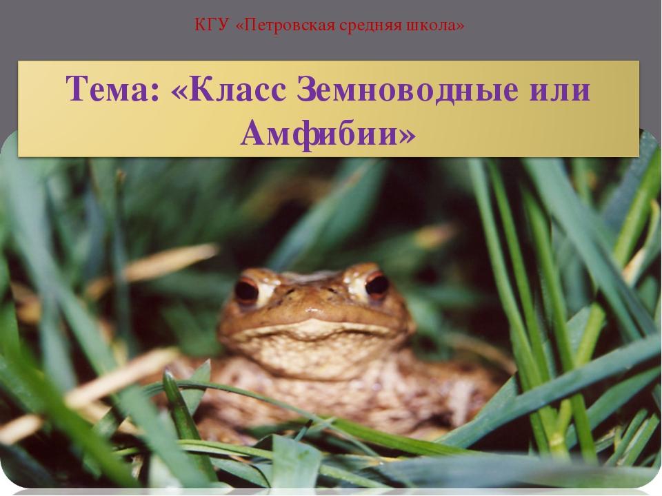 КГУ «Петровская средняя школа»