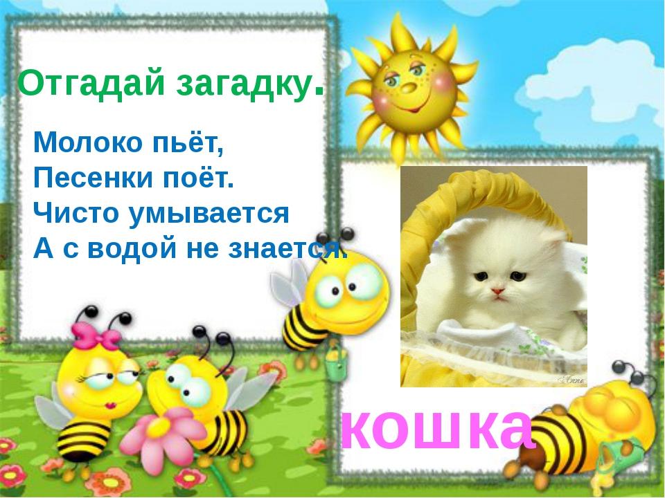 кошка Молоко пьёт, Песенки поёт. Чисто умывается А с водой не знается. Отгада...