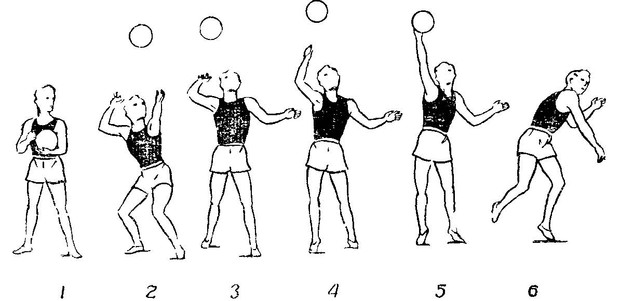 Верхняя прямая подача в волейболе