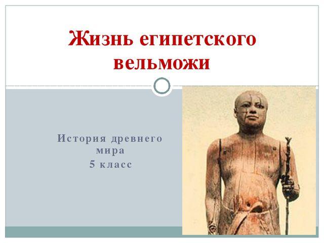 История древнего мира 5 класс Жизнь египетского вельможи