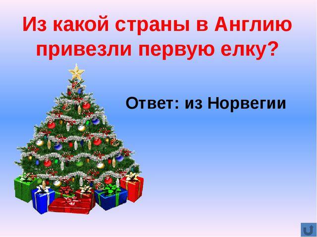Сколько свечей зажигают на рождественском венке? Ответ: 4 свечи