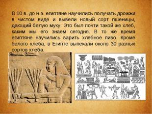 В 10 в. до н.э. египтяне научились получать дрожжи в чистом виде и вывели нов