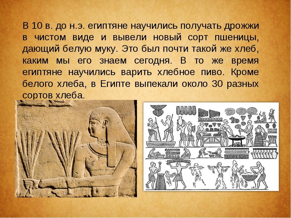 В 10 в. до н.э. египтяне научились получать дрожжи в чистом виде и вывели нов...
