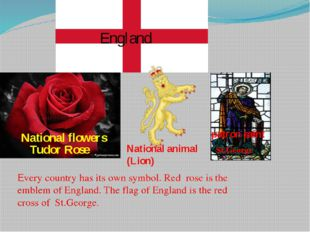 Every country has its own symbol. Red rose is the emblem of England. The flag