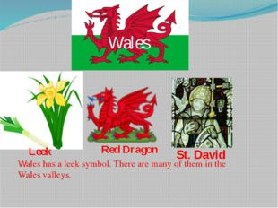 Wales St. David Leek Red Dragon Wales has a leek symbol. There are many of th