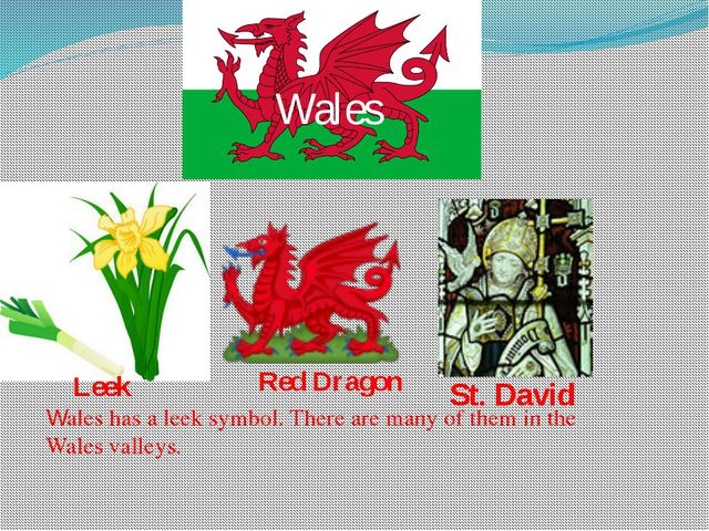 Wales St. David Leek Red Dragon Wales has a leek symbol. There are many of th...