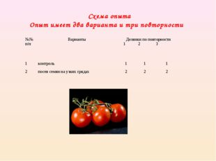 Схема опыта Опыт имеет два варианта и три повторности №№ п/пВариантыДелянк