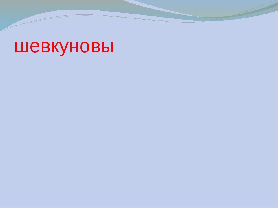 шевкуновы