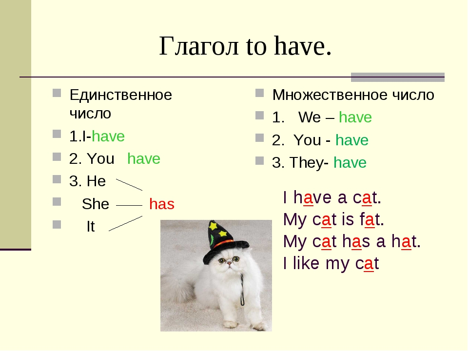 Глагол to have. Единственное число 1.I-have 2. You have 3. He She has It Множ...
