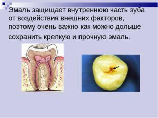 Эмаль защищает внутреннюю часть зуба от воздействия внешних факторов, поэтому