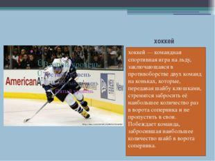 хоккей хоккей—командная спортивная игранальду, заключающаяся в противобор