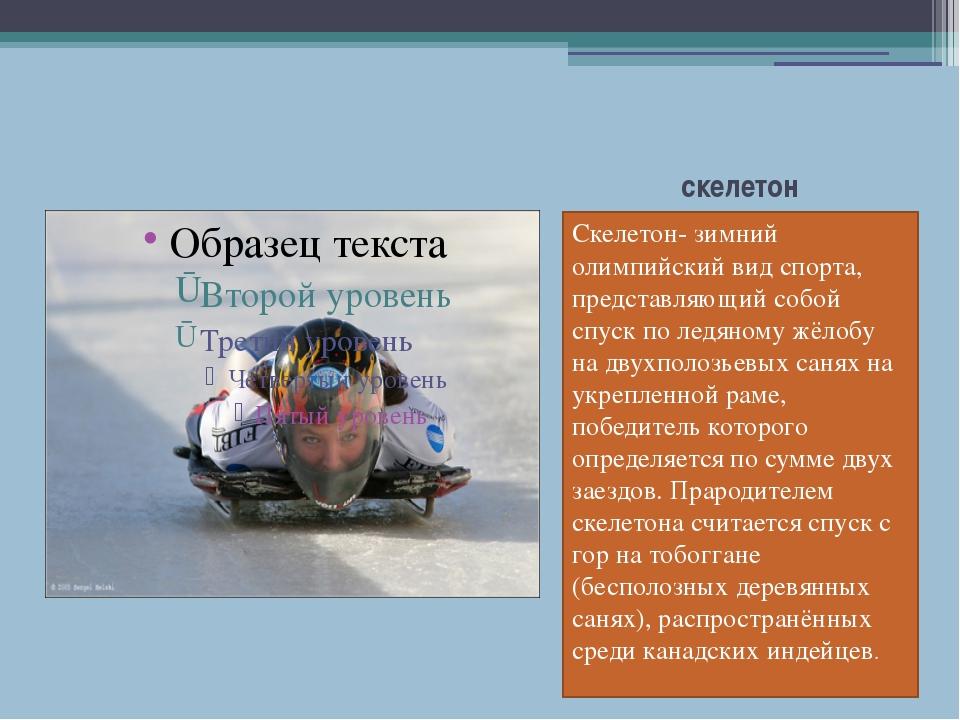 скелетон Скелетон- зимний олимпийский вид спорта, представляющий собой спуск...