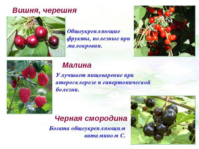 Вишня, черешня Общеукрепляющие фрукты, полезные при малокровии. Малина Улучша...