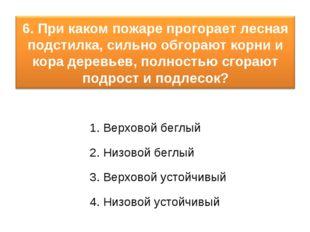 1. Верховой беглый 2. Низовой беглый 3. Верховой устойчивый 4. Низовой устойч