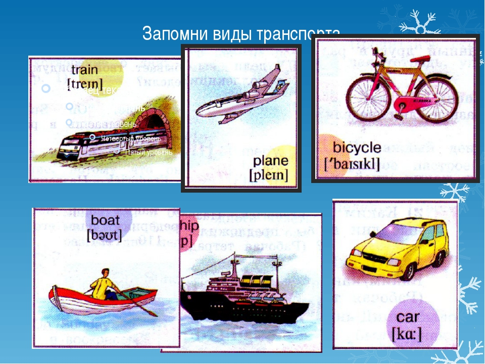 Запомни виды транспорта