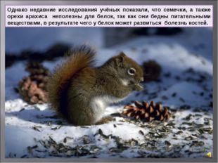 Однако недавние исследования учёных показали, что семечки, а также орехи арах