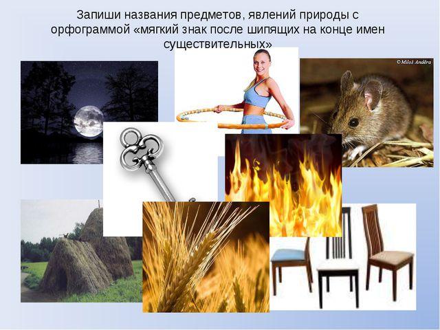 Запиши названия предметов, явлений природы с орфограммой «мягкий знак после ш...