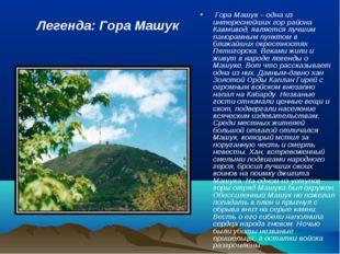 Гора Машук – одна из интереснейших гор района Кавмивод, является лучшим пан