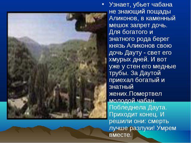 Узнает, убьет чабана не знающий пощады Аликонов, в каменный мешок запрет доч...
