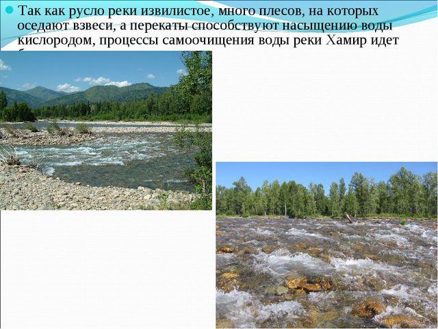 Так как русло реки извилистое, много плесов, на которых оседают взвеси, а пер...