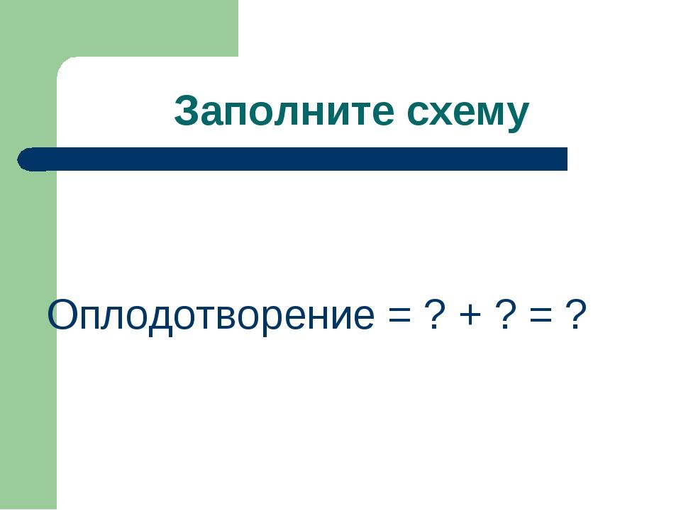 Заполните схему Оплодотворение = ? + ? = ?