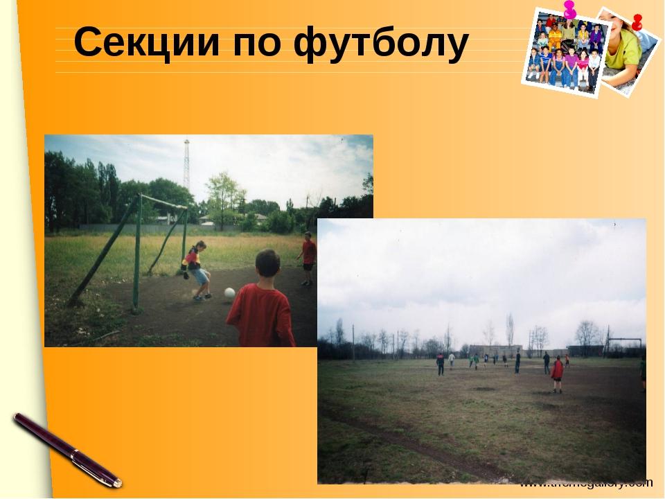 Секции по футболу www.themegallery.com