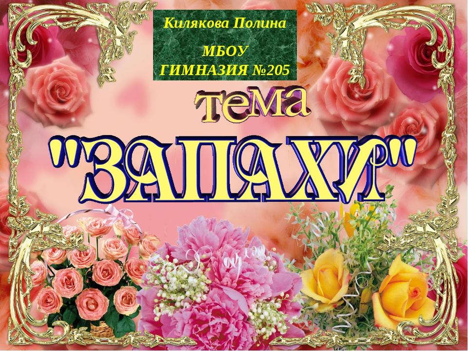 Килякова Полина МБОУ ГИМНАЗИЯ №205