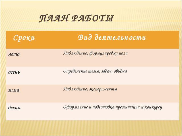 ПЛАН РАБОТЫ Сроки Вид деятельности летоНаблюдение, формулировка цели осень...