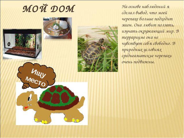 МОЙ ДОМ На основе наблюдений я сделал вывод, что моей черепахе больше подход...