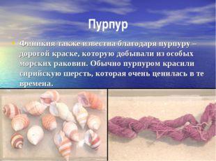 Пурпур Финикия также известна благодаря пурпуру – дорогой краске, которую доб