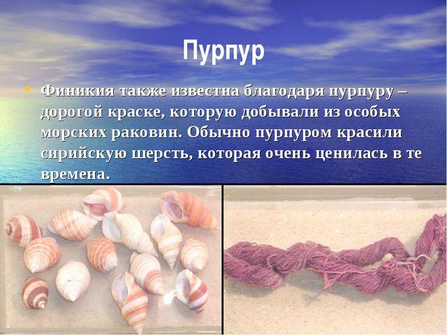 Пурпур Финикия также известна благодаря пурпуру – дорогой краске, которую доб...