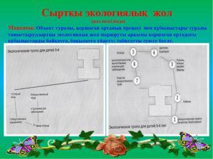 Сыртқы экологиялық жол (жаз мезгілінде) Мақсаты: Объект туралы, қоршаған орта