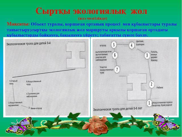 Сыртқы экологиялық жол (жаз мезгілінде) Мақсаты: Объект туралы, қоршаған орта...