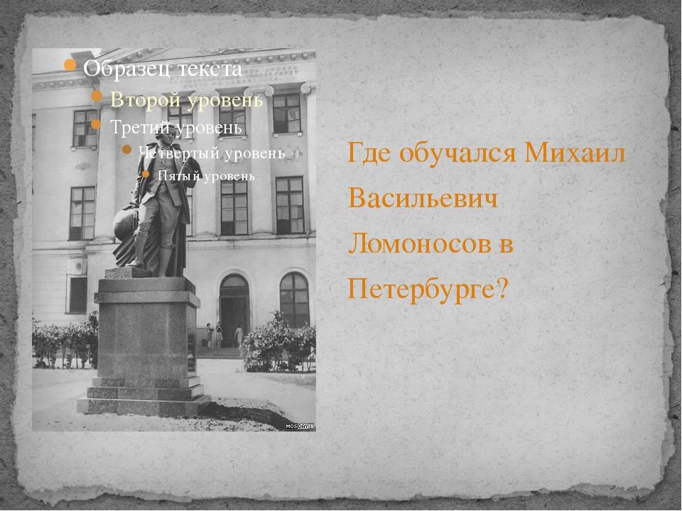 Где обучался Михаил Васильевич Ломоносов в Петербурге?