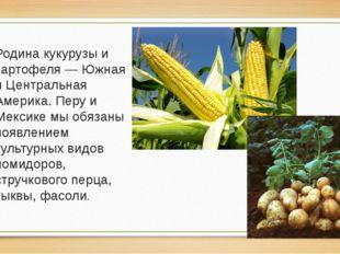 Родина кукурузы и картофеля — Южная и Центральная Америка. Перу и Мексике мы