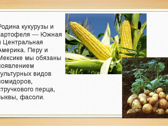 Родина кукурузы и картофеля — Южная и Центральная Америка. Перу и Мексике мы...