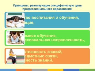 Принципы, реализующие специфическую цель профессионального образования