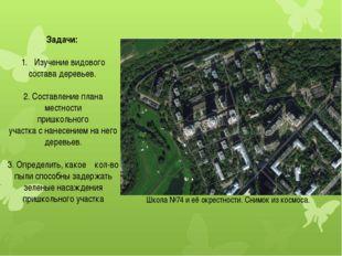 Задачи: Изучение видового состава деревьев. 2. Составление плана местности пр