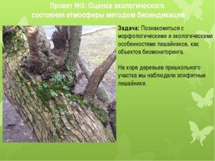 Задача: Познакомиться с морфологическими и экологическими особенностями лишай