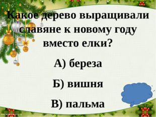 Какое дерево выращивали славяне к новому году вместо елки? А) береза Б) вишн