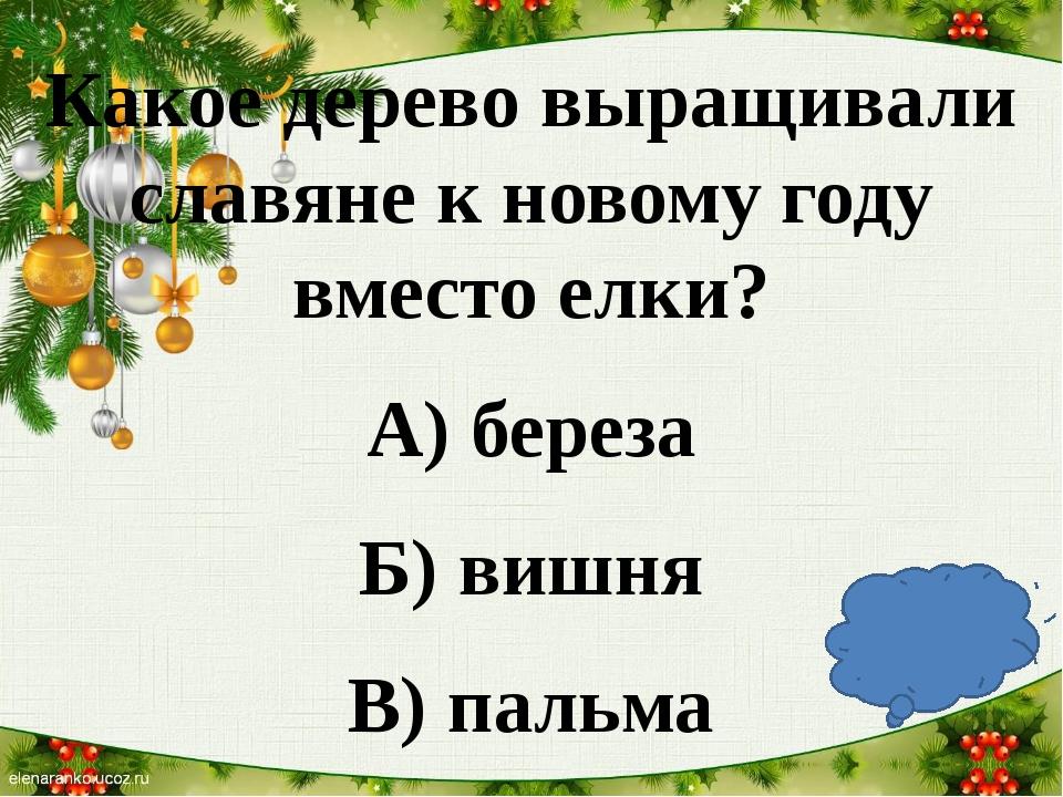 Какое дерево выращивали славяне к новому году вместо елки? А) береза Б) вишн...
