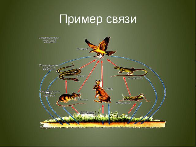 Пример связи