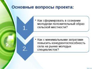Основные вопросы проекта: