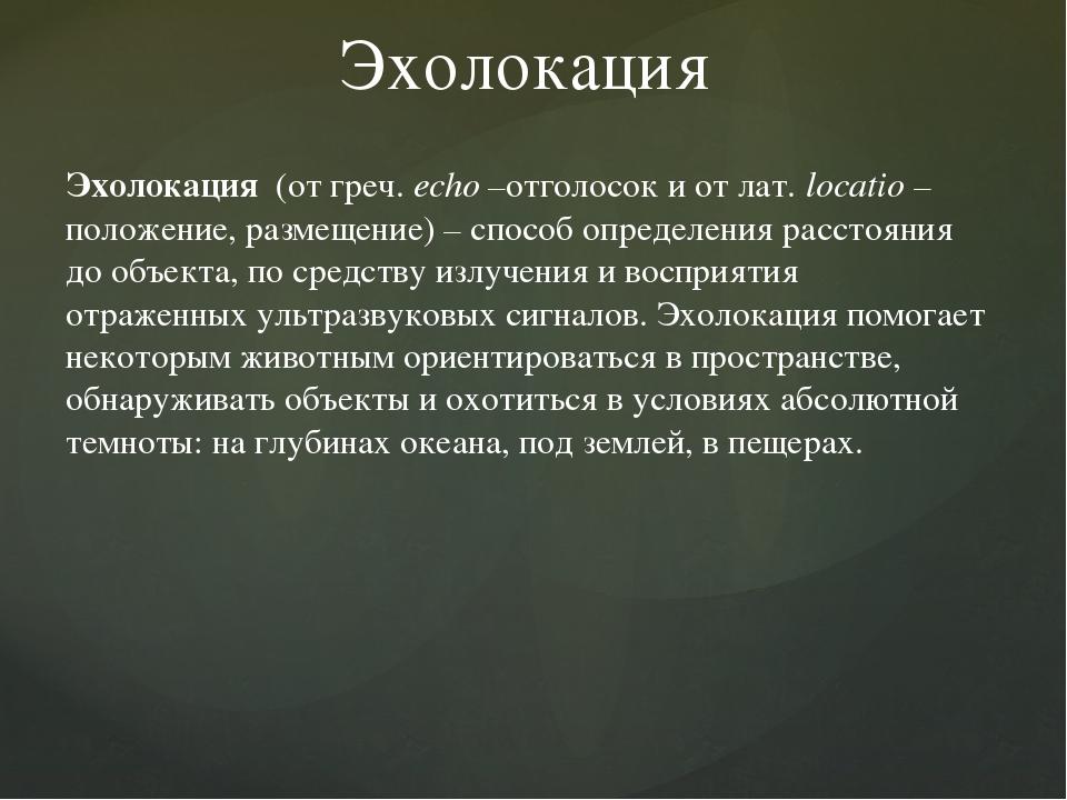 Эхолокация Эхолокация (от греч. еcho –отголосок и от лат. locatio – положение...