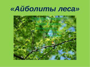«Айболиты леса»